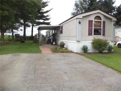 Allegany Single Family Home For Sale: 4115 S Nine Mile Rd Lot 19