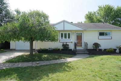 Amherst Single Family Home For Sale: 25 Castle Court