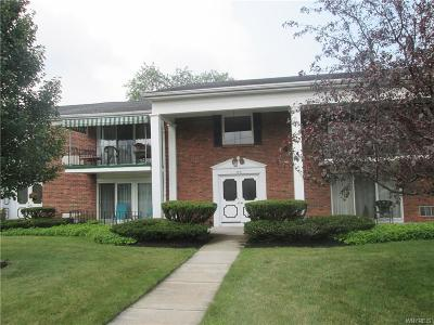 Amherst Single Family Home For Sale: 355 S Cayuga Road #C