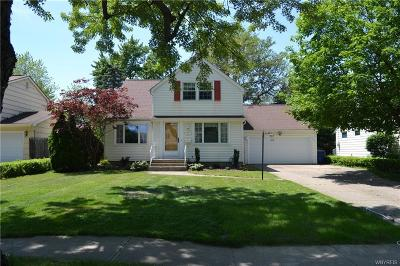 Erie County Single Family Home For Sale: 100 Cindy Drive