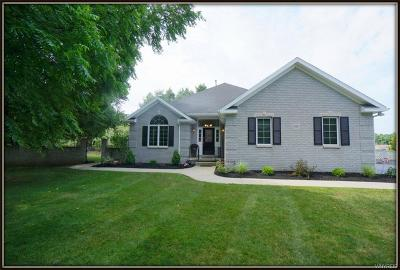 Erie County Single Family Home For Sale: 8061 Clarherst Drive
