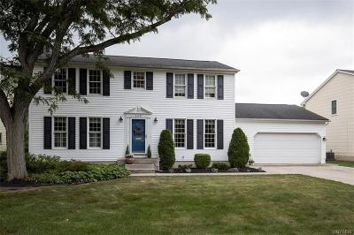 Amherst Single Family Home For Sale: 289 Countryside Lane