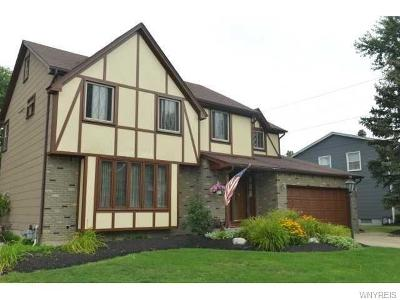 West Seneca Single Family Home For Sale: 47 Pleasantview Lane