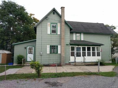 Niagara County Single Family Home For Sale: 371 Bryant Street
