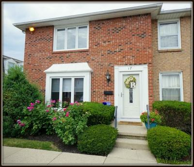 Williamsville Condo/Townhouse For Sale: 17 The Courtyards