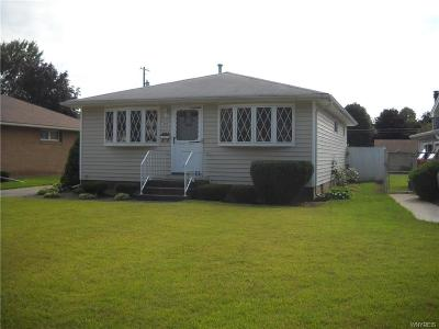 Depew Single Family Home For Sale: 342 Argus Drive