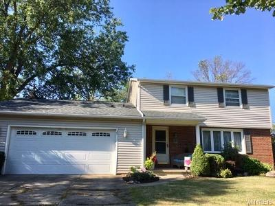 Hamburg Single Family Home For Sale: 25 Browning Drive