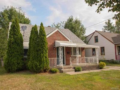 Cheektowaga Single Family Home For Sale: 22 Wellworth Place