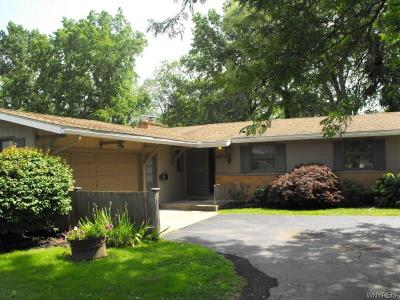 Lewiston NY Single Family Home For Sale: $189,900