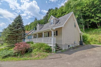 Cattaraugus County Single Family Home For Sale: 8 Van Buren Place