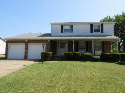 Amherst Single Family Home For Sale: 143 N Brier Road