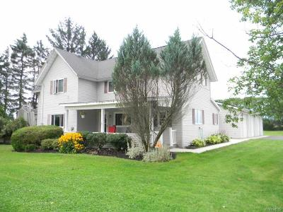 Erie County Single Family Home For Sale: 10320 Middle Road