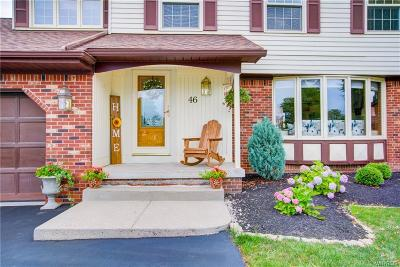 Erie County Single Family Home For Sale: 46 Pheasant Run Lane