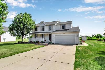 Orchard Park Single Family Home For Sale: 3325 Angle Road