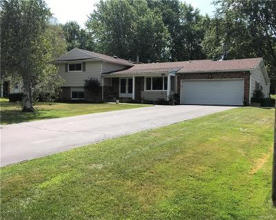 Erie County Single Family Home For Sale: 4690 Edgewood