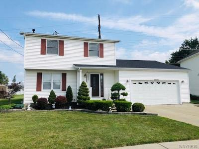 Niagara Falls Single Family Home For Sale: 1281 Brandi Drive