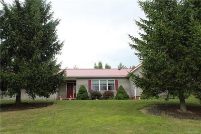 Genesee County Single Family Home For Sale: 86 Colony Run