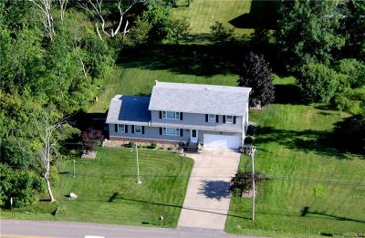 Grand Island Single Family Home For Sale: 1460 Staley Road