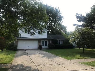Amherst Single Family Home For Sale: 29 Brooklane Drive