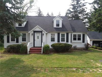 West Seneca Single Family Home For Sale: 524 Union Road