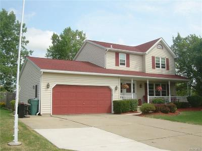 Wheatfield Single Family Home For Sale: 3045 Michael Dr