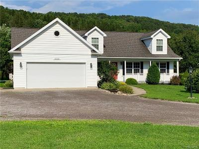 Ellicottville Single Family Home For Sale: 6550 Maples Road