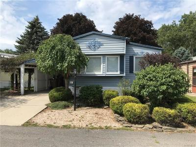 Cheektowaga Single Family Home For Sale: 105 Carefree Lane