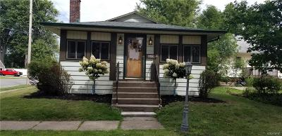 Niagara Falls Single Family Home For Sale: 8600 Rivershore Drive