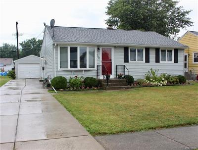 Cheektowaga Single Family Home For Sale: 102 Alaska Street