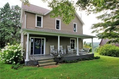 Cattaraugus County Single Family Home For Sale: 7273 Jersey Hollow Road