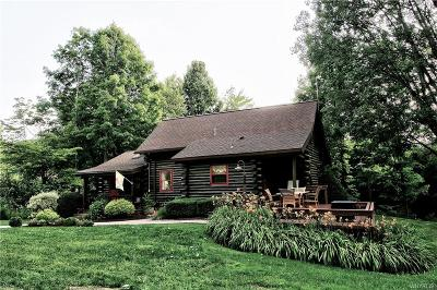 Cattaraugus County Single Family Home For Sale: 7349 Kent (Off) Road