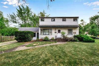 Amherst Single Family Home For Sale: 353 Burroughs Drive