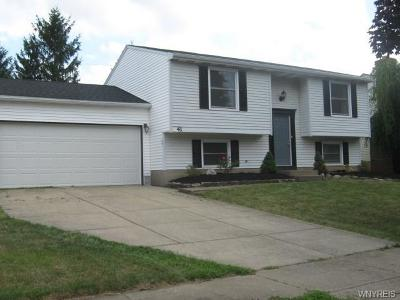 Cheektowaga Single Family Home For Sale: 41 Woodgate Drive