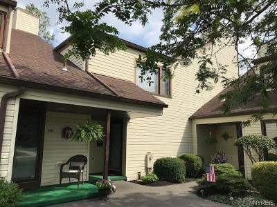 Amherst Single Family Home For Sale: 153 Old Meadow Drive