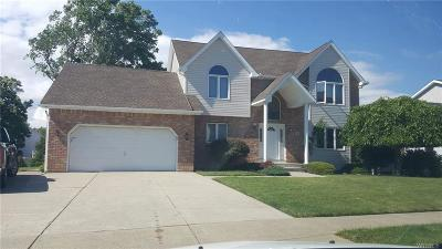 West Seneca Single Family Home For Sale: 4 Carla Lane