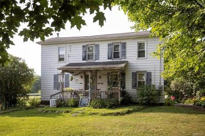 Sheldon Single Family Home For Sale: 2026 Route 20a