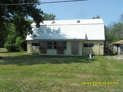 Niagara County Single Family Home For Sale: 6860 Walmore Road