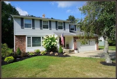 Orchard Park Single Family Home Pending: 129 South Lane