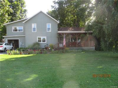 Cattaraugus County Single Family Home For Sale: 8610 Otto-Maples Road