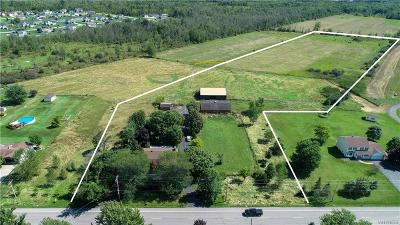Lockport Single Family Home For Sale: 4520 Beach Ridge Road