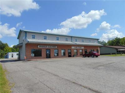 Commercial For Sale: 434 Olean Road