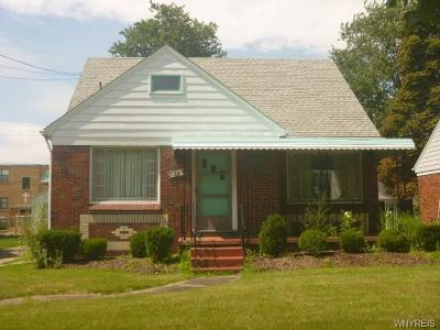 Cheektowaga Single Family Home For Sale: 38 Flora Road