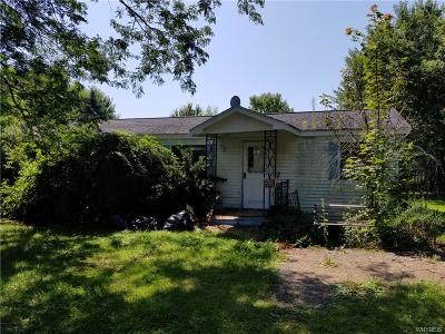Orleans County Single Family Home For Sale: 14184 W County House Road