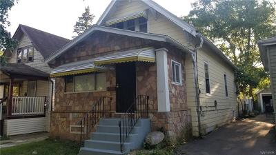 Buffalo Single Family Home For Sale: 234 Schuele Avenue