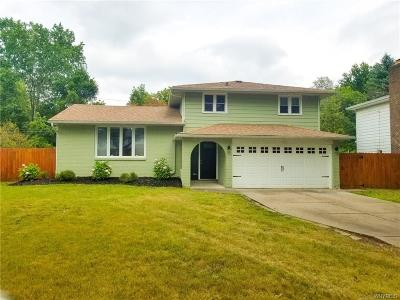 Amherst Single Family Home For Sale: 376 Vine Lane