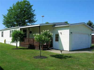 Akron Single Family Home For Sale: 30 Golden Pond Est