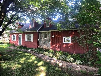 Erie County Single Family Home For Sale: 7271 Sand Hill Road