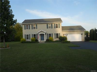Genesee County Single Family Home For Sale: 8449 Violet Lane