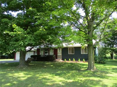 Genesee County Single Family Home For Sale: 8657 W Bergen Road