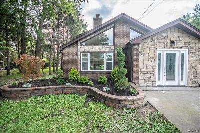 Erie County Single Family Home For Sale: 616 Paradise Road
